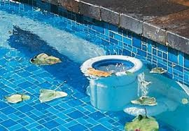 Swimming Pool Cleaning Garsfontein